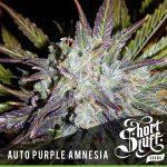 Auto auto purple amnesia feminised