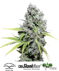 CBD Skunk Haze Feminised Seeds