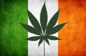 cannabis seeds legal ireland